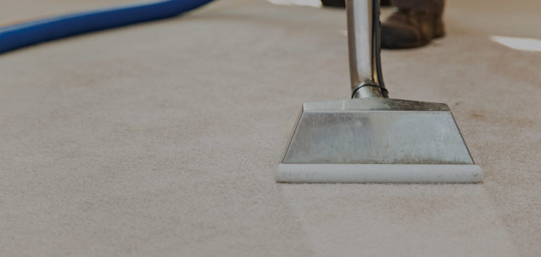 Carpet Cleaning Services SW6