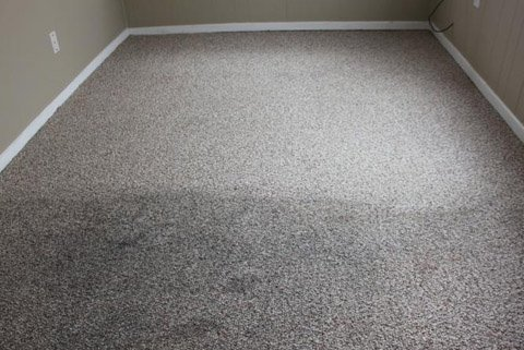 Carpet Cleaners SW6